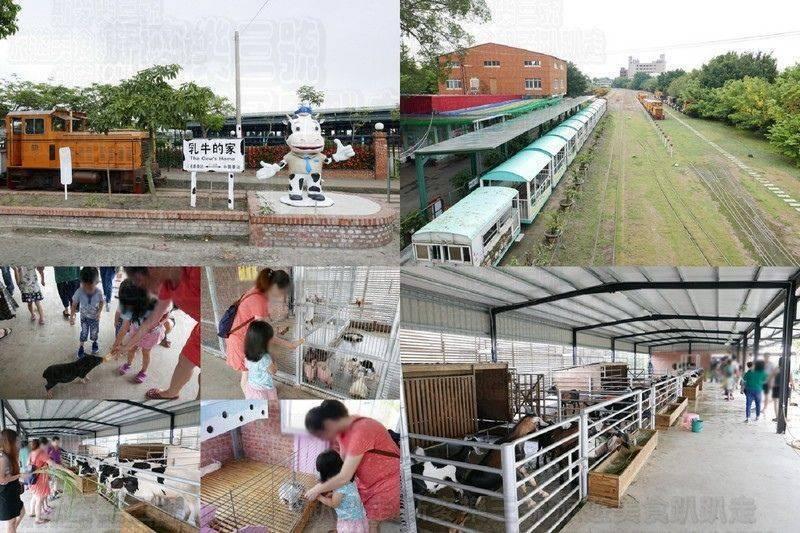 [台南柳營] 八老爺車站 乳牛的家 搭火車吃冰餵小動物趣 20180616